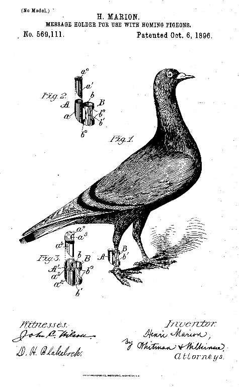 Henri Marion Homing Pigeon Patent 1896