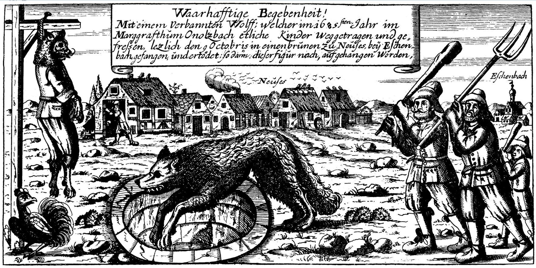 Wolf of Ansbach