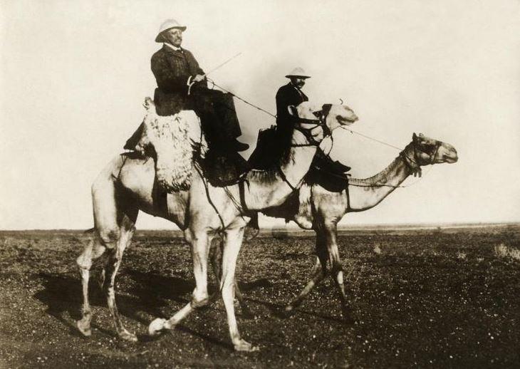 Theodore Roosevelt riding a Camel, Khartoum, Sudan