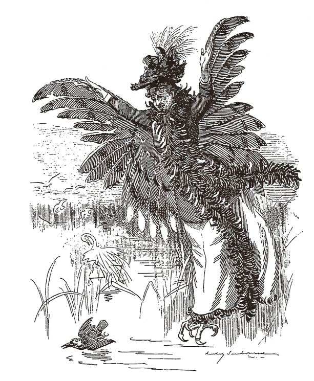 A Bird of Prey, Punch, May 14, 1892