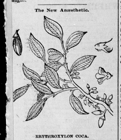 """The New Anaesthetic,"" [Terre Haute] Saturday Evening Mail, February 21, 1885, 8, Hoosier State Chronicles."